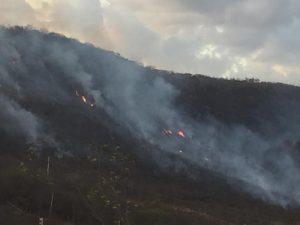 Fogo devasta serra em Farias_ Foto Caririceara.com Brito (1)
