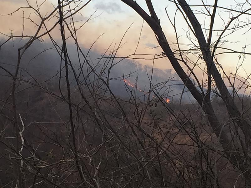Fogo devasta serra em Farias_ Foto Caririceara.com Brito (2)