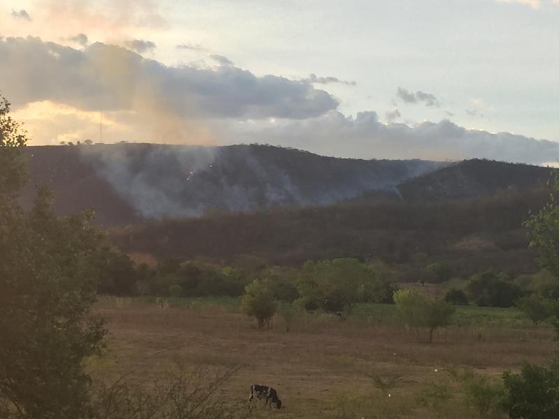 Fogo devasta serra em Farias_ Foto Caririceara.com Brito (3)