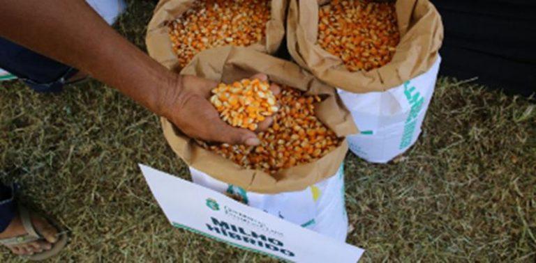 Governo do Ceará lança Hora de Plantar 2017 e amplia para 150 mil agricultores beneficiados (2)