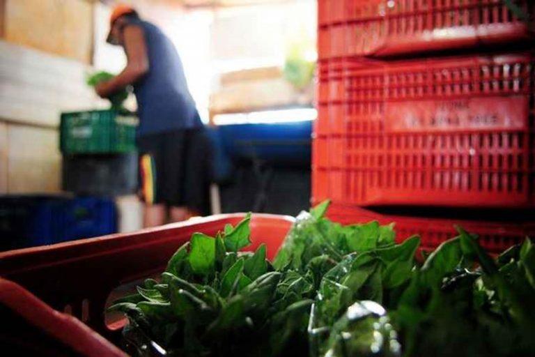 PROGRAMA DE AQUISIÇÃO DE ALIMENTOS Cooperativas de agricultores familiares devem enviar propostas de vendas de alimentos até 18 de maio