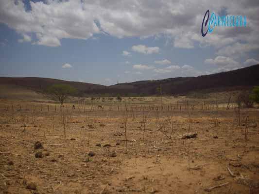 SECA _Ministério da Integração reconhece situação de emergência em mais 32 municípios cearenses Foto_Adriano Duarte_Arquivo_Caririceara.com