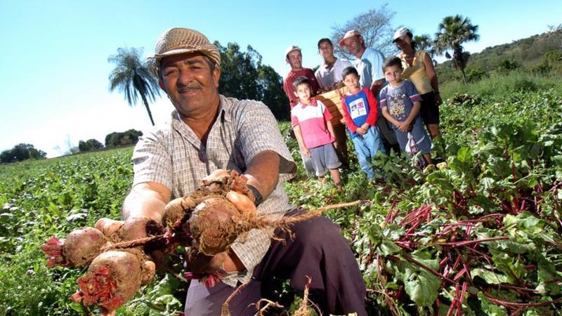 Encontro para discutir renegociação de dívidas de produtores rurais será realizado pelo Banco do Nordeste no Cariri