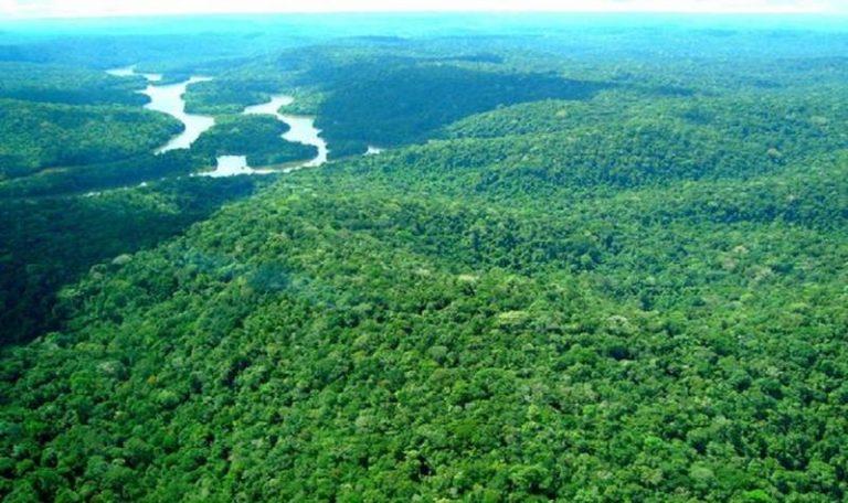 Governo vai revogar decreto e editar nova medida descrevendo extinção da Reserva Nacional do Cobre e Associados (Renca).
