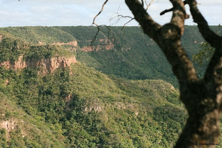 chapada-do-araripe-no-crato