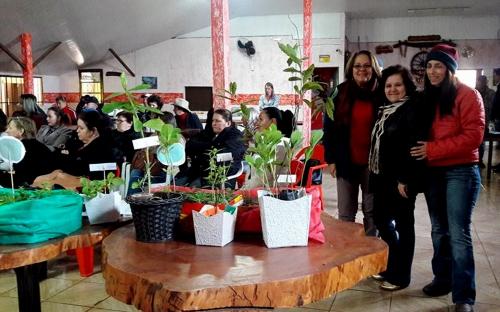 BARBALHA Encontro para discutir uso de plantas medicinais será realizado  no distrito de Arajara