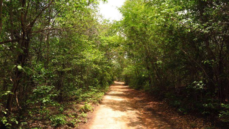 Expedição no Sítio Fundão marca o Dia Latinoamericano e Caribenho de Geoturismo