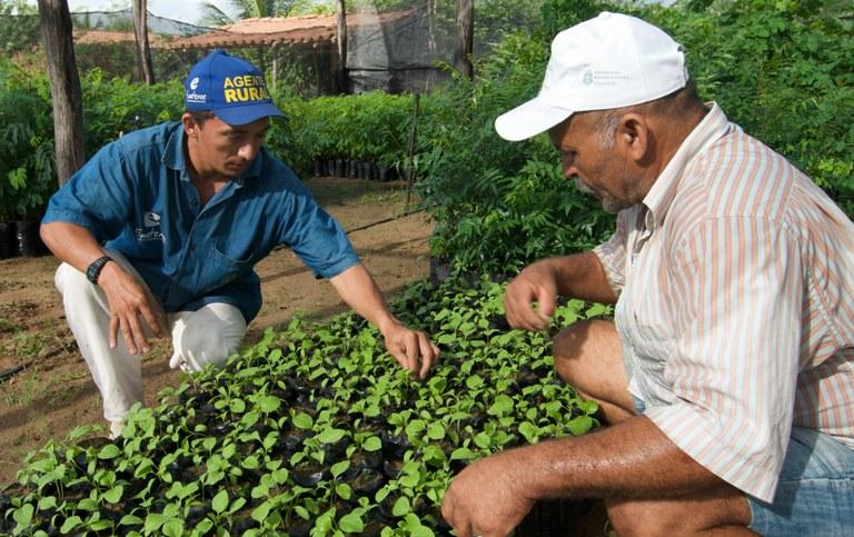 Ceará inicia ações do Projeto Dom Helder Câmara