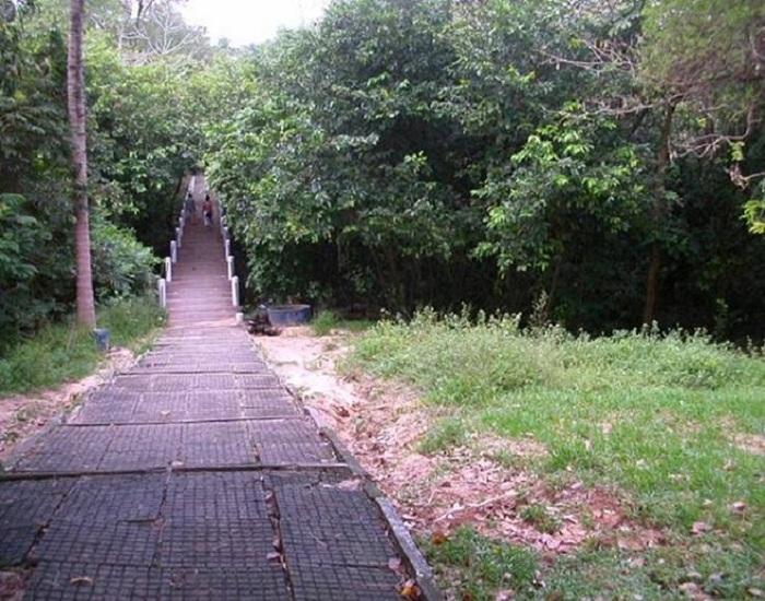 Turismo ecológico une trilhas e cultura na região do Cariri