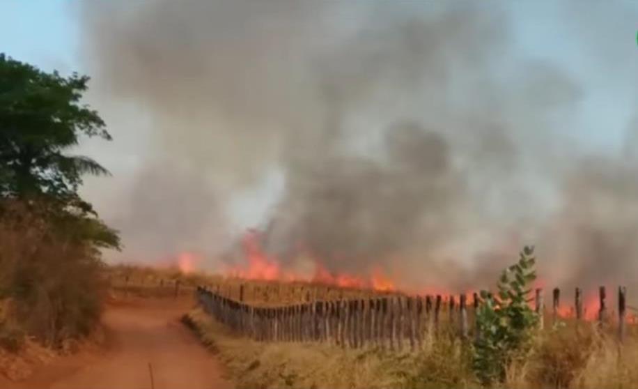 Incêndio na encosta da Chapada do Araripe atinge roçado em comunidade e mata animais