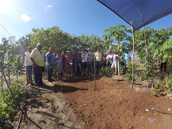Agricultores e Produtores Trocam Experiências de convivência com o Semiárido no Centro-Sul