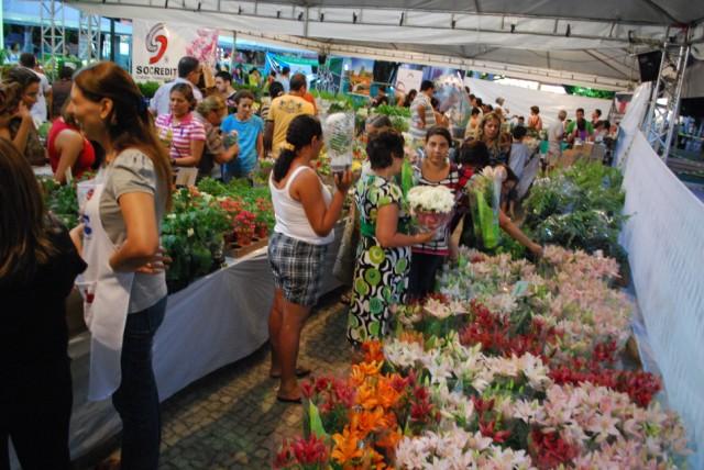 X edição do Festival de Flores de Holambra confirma sucesso do evento com grande público