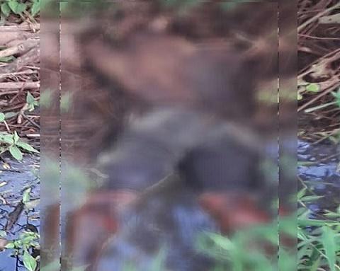 Corpo de homem não identificado de idade aparente 40 anos é encontrado nas imediações do SESTSENAT em Crato_ Foto redes sociais