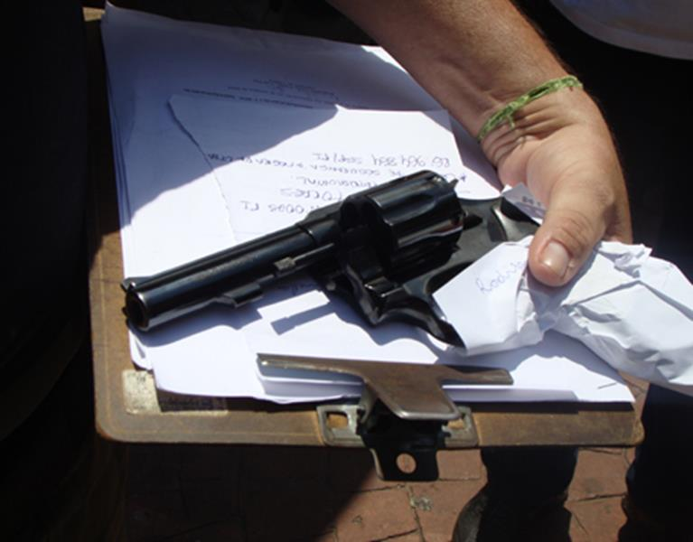 reolver-pancreta (Copy)