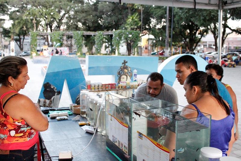 Feira de Peixes Ornamentais reúne centenas de pessoas na Praça da Sé, neste domingo (18), em Crato