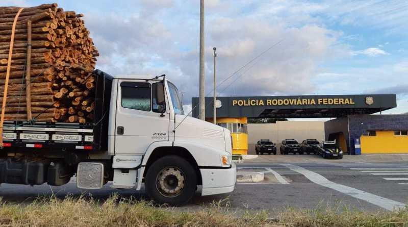 PRF apreende caminhão carregado de madeira ilegal, em Milagres, Ceará Foto PRF Divulgação (1)