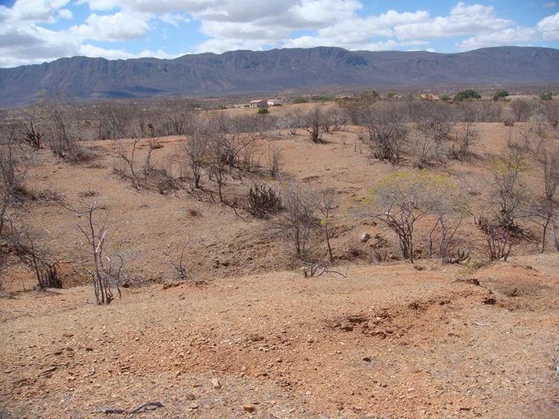 desertificacao (Copy)