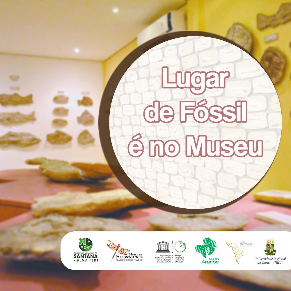 Paleofesta promove valorização e resgate de fósseis em Santana do Cariri