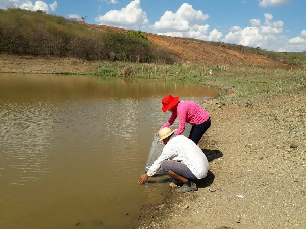 Peixamento ocorreu em 11 localidades do município -Reprodução.