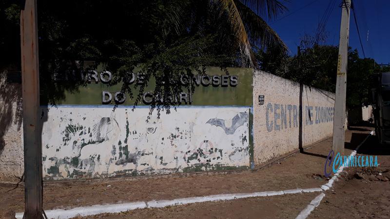 Centro Zoonoses do Crato 04.07.2018 Foto Jota Lopes. Ag. Caririceara (1)