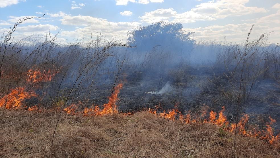 Chuvas em regiões do Ceará têm reduzido riscos de queimadas no estado