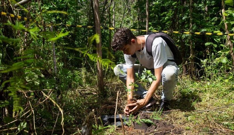 Pesquisa sobre reflorestamento do Sítio Fundão é retomada